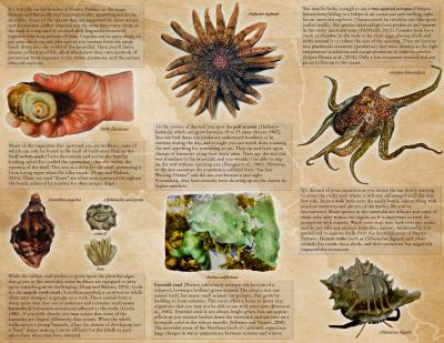 148842-Thumbnail Image.jpg